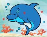 Delfín bufeo
