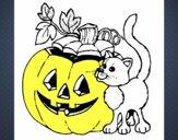 Calabaza y gato