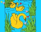 Dibujo Cisnes pintado por LunaLunita