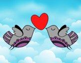 Pájaros con corazón