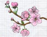 Dibujo Rama de cerezo pintado por Klandora