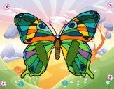 Mariposa silvestre