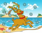 Reno de Navidad