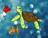 Tortuga de mar con peces
