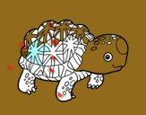 Tortuga estrellada de la India