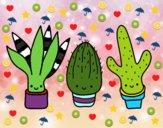201744/mini-cactus-naturaleza-flores-pintado-por-dalas-11181133_163.jpg