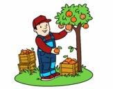 Dibujo Un agricultor pintado por AgusNet