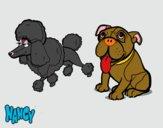 Los perritos de Nancy