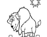 Dibujo de Bisonte en el desierto para colorear