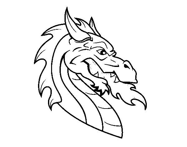 Dibujos Para Colorear Dibujos De Dragones Para Imprimir 4: Dibujo De Cabeza De Dragón Europeo Para Colorear