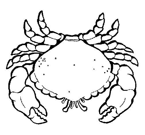 Dibujo de Cangrejo grande para Colorear