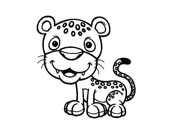 Leopardos Para Colorear. Cool Leopardos Para Colorear. Gallery Of Se ...