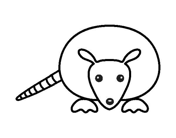 Dibujo de Cría de armadillo para Colorear