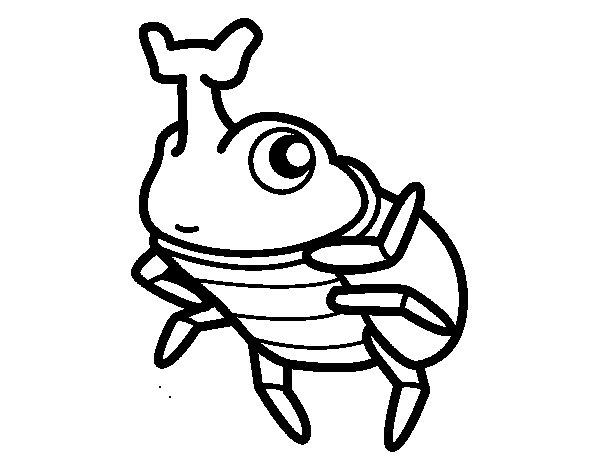 Dibujo de Escarabajo rinoceronte para Colorear  Dibujosnet