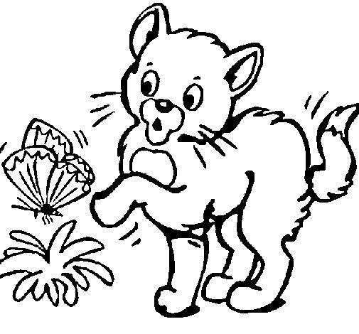 Dibujo de Gato 1 para Colorear