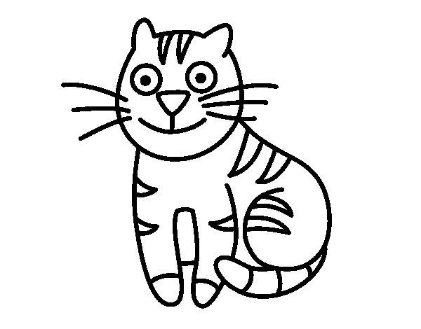 Dibujo de Gato simpático para Colorear