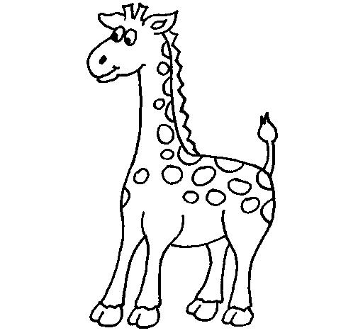 Dibujo de Jirafa 5 para Colorear - Dibujos.net