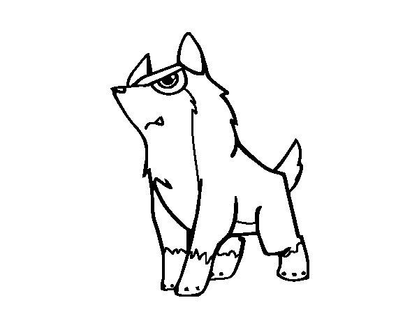 Dibujo de Lobo gris para Colorear  Dibujosnet