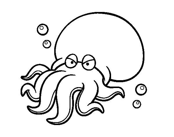 Dibujo de Octopoda para Colorear