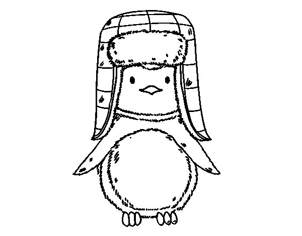 Dibujo de Pingüino con gorro para Colorear
