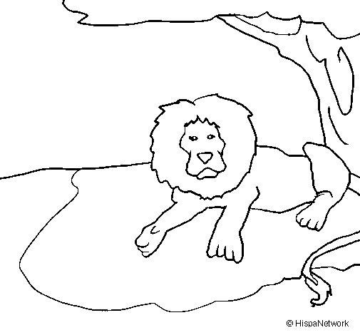 Dibujo de Rey león para Colorear