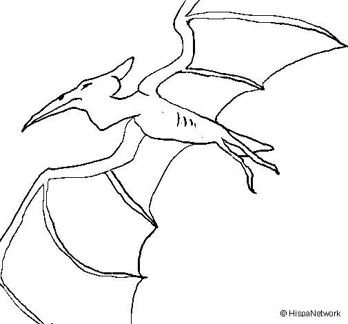 Dibujo de Terodáctilo para Colorear