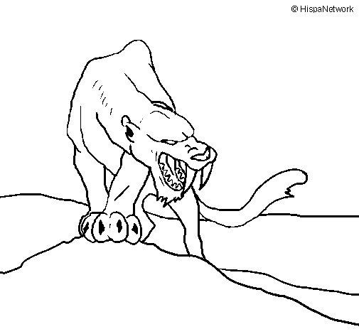 Dibujo de Tigre con afilados colmillos para Colorear