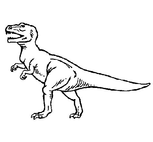Dibujo de Tiranosaurus Rex para Colorear
