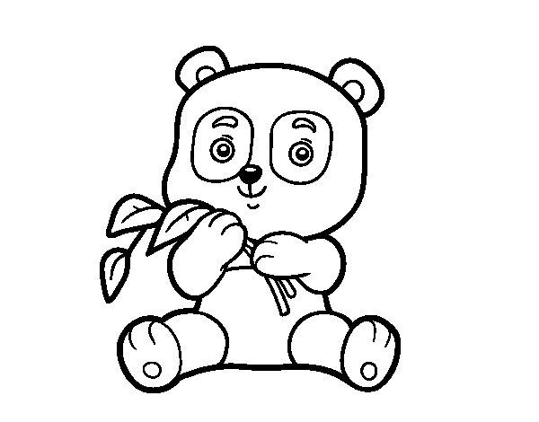 Dibujo de Un oso panda para Colorear  Dibujosnet