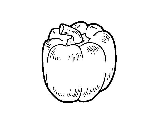 Dibujo de Un pimiento rojo para Colorear  Dibujosnet