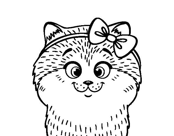 Dibujo de Una gatita con lazo para Colorear