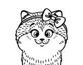 Dibujo de Una gatita con lazo