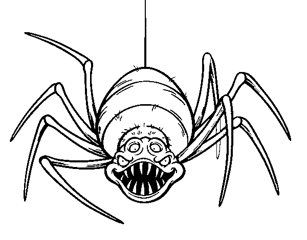 Arañas De Halloween Para Colorear: Dibujo De Araña Espeluznante Para Colorear