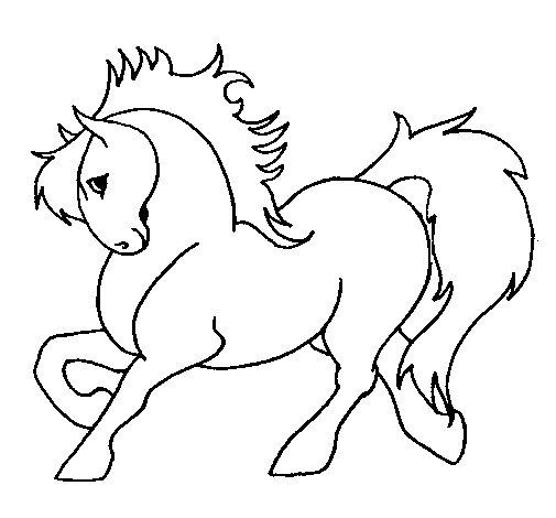 Dibujo de Caballo robusto para Colorear - Dibujos.net