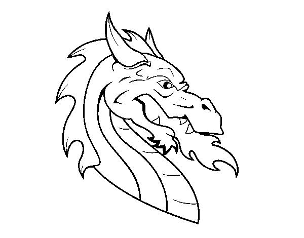 Dibujo De Cabeza De Dragón Europeo Para Colorear