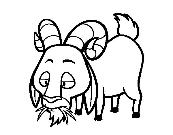 Dibujo De Cabra Comiendo Para Colorear Dibujosnet