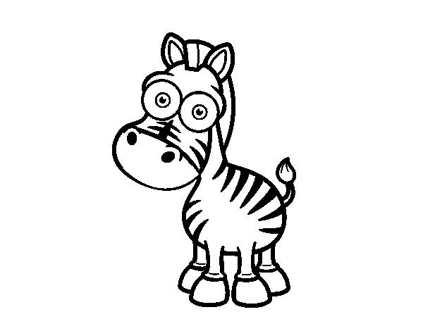 Dibujo de Cebra de Grévy para Colorear - Dibujos.net