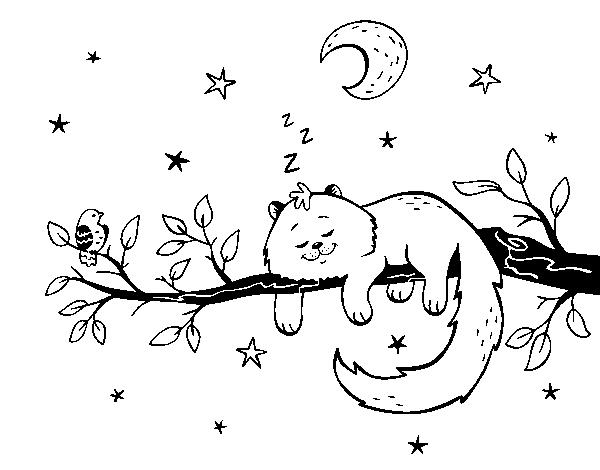 Dibujo De El Gato Y La Luna Para Colorear Dibujosnet