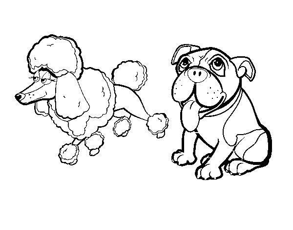 Dibujo de Los perritos de Nancy para Colorear - Dibujos.net