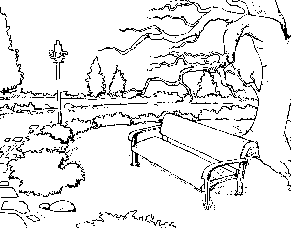 Dibujo De Paisaje De Parque Para Colorear Dibujos Net