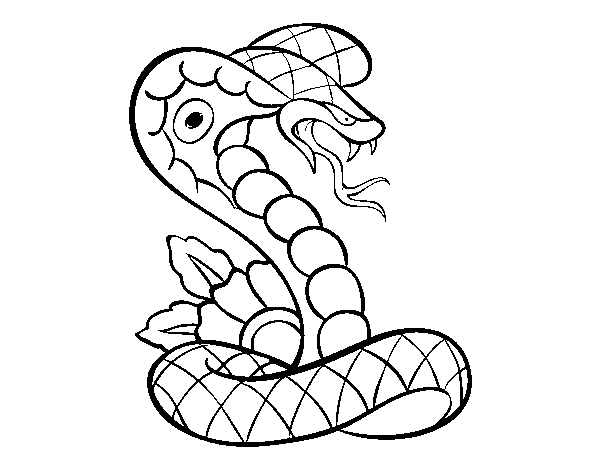 Dibujo de Tatuaje de cobra para Colorear Dibujosnet